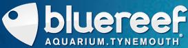 Blue Reef Aquarium Tynemouth Discount Codes & Deals